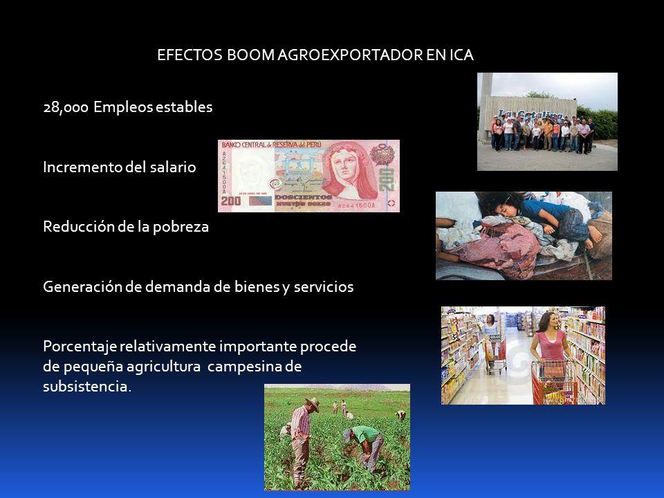 EFECTOS BOOM AGROEXPORTADOR EN ICA
