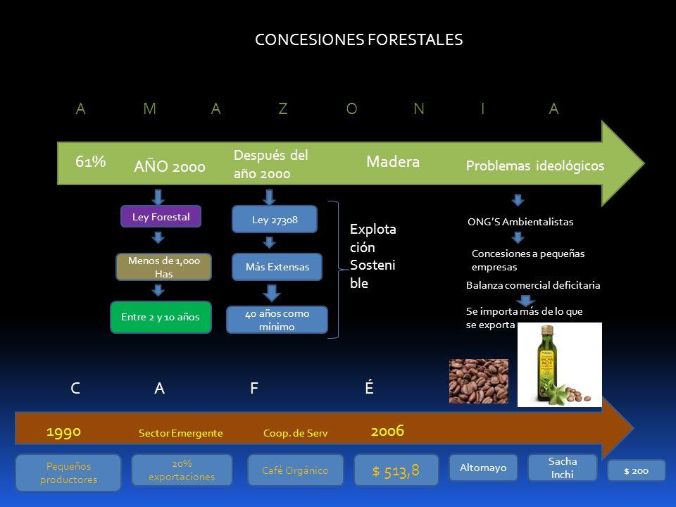 CONCESIONES FORESTALES