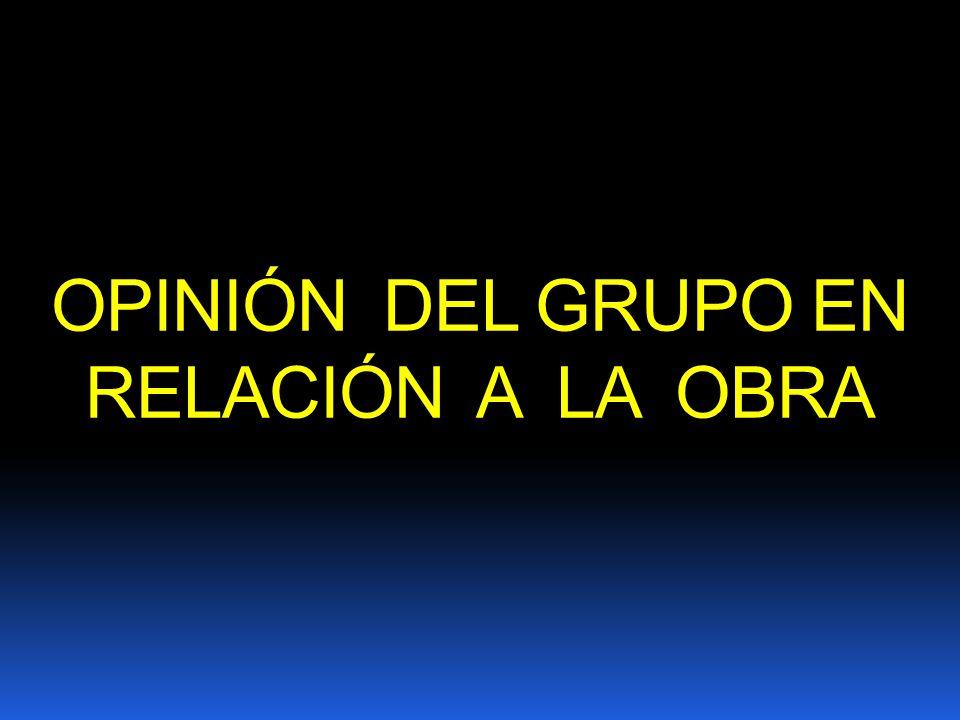OPINIÓN DEL GRUPO EN RELACIÓN A LA OBRA