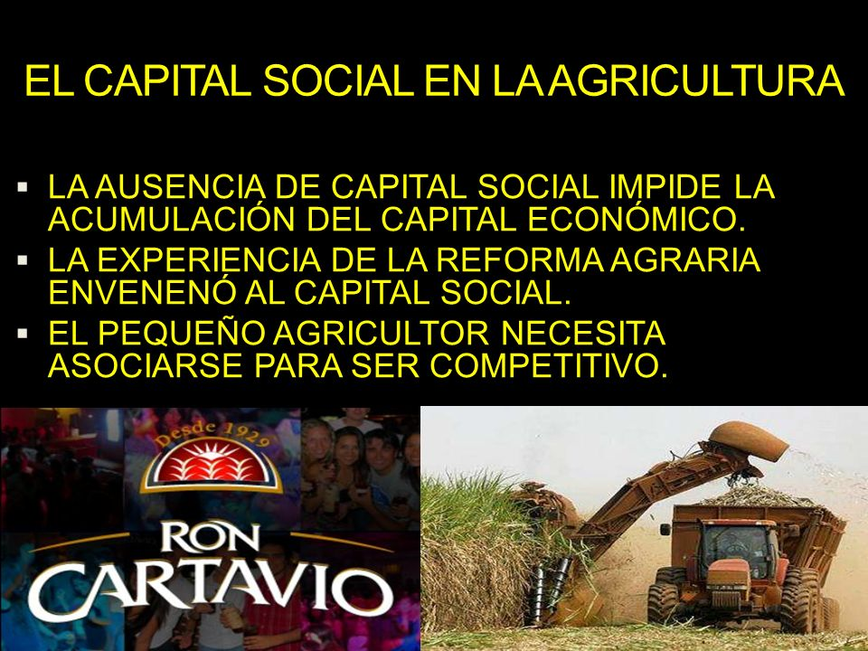 EL CAPITAL SOCIAL EN LA AGRICULTURA