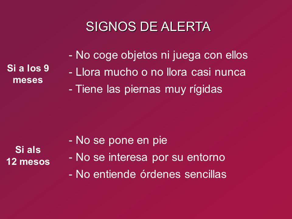 SIGNOS DE ALERTA - No coge objetos ni juega con ellos