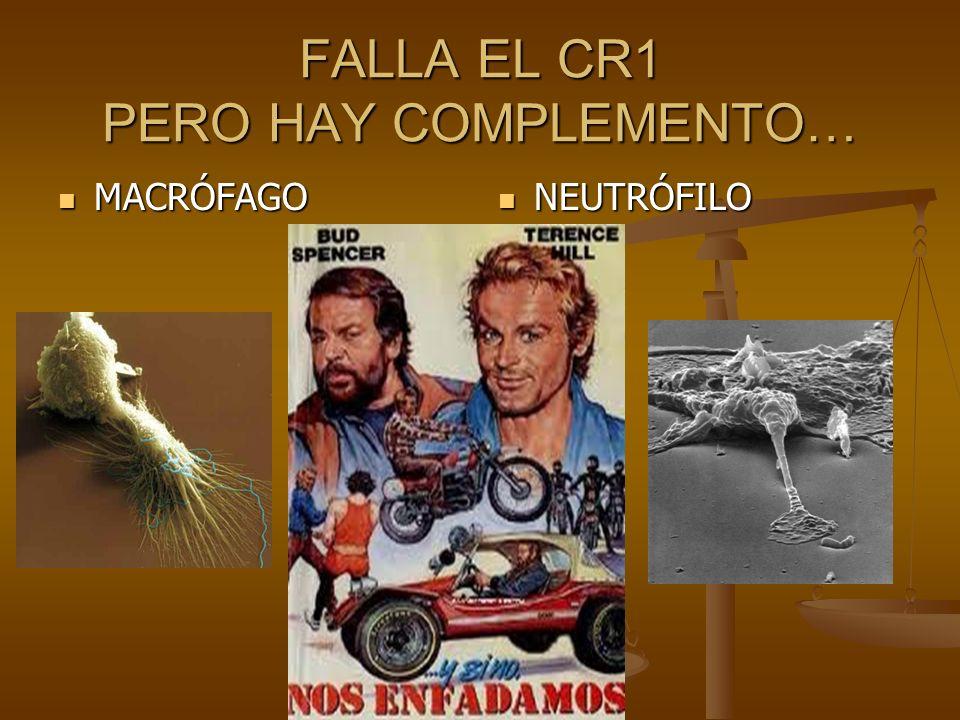 FALLA EL CR1 PERO HAY COMPLEMENTO…