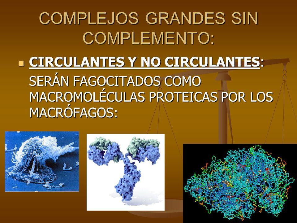 COMPLEJOS GRANDES SIN COMPLEMENTO: