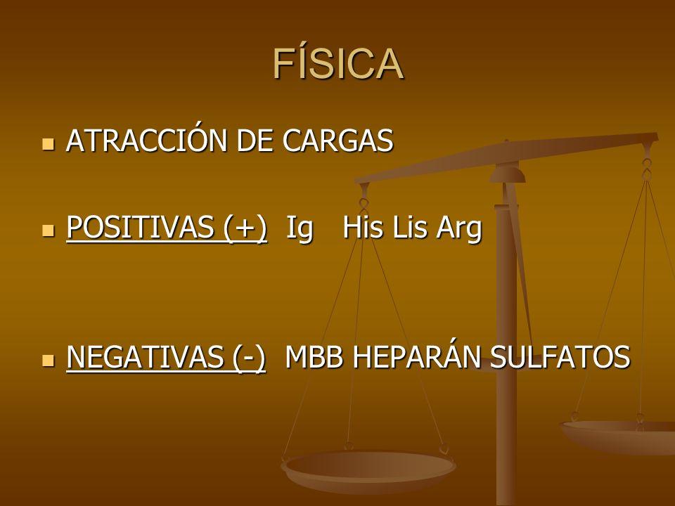 FÍSICA ATRACCIÓN DE CARGAS POSITIVAS (+) Ig His Lis Arg