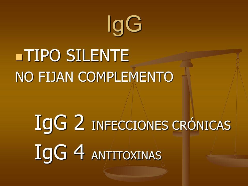 IgG IgG 2 INFECCIONES CRÓNICAS IgG 4 ANTITOXINAS TIPO SILENTE
