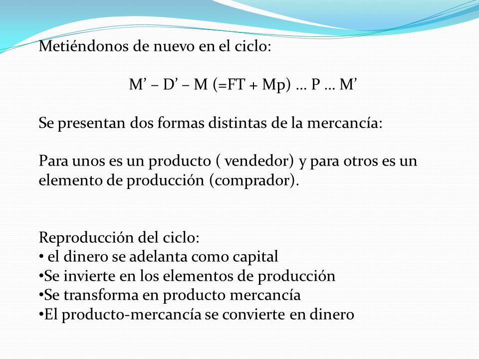 M' – D' – M (=FT + Mp) … P … M'
