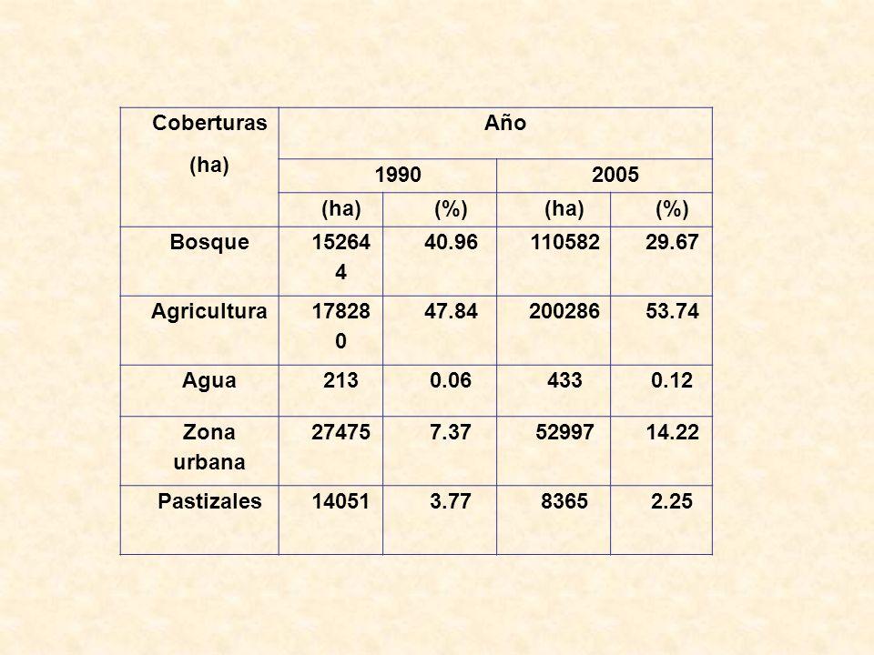 Coberturas (ha) Año. 1990. 2005. (%) Bosque. 15264 4. 40.96. 110582. 29.67. Agricultura. 17828 0.