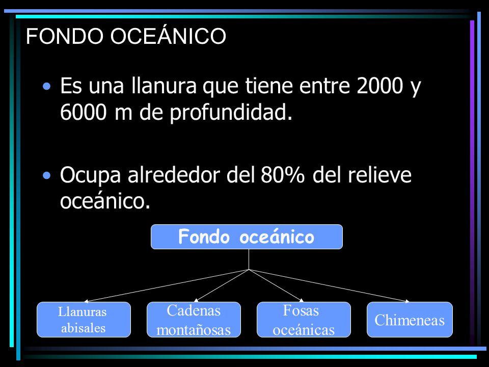 Es una llanura que tiene entre 2000 y 6000 m de profundidad.