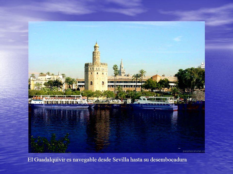 El Guadalquivir es navegable desde Sevilla hasta su desembocadura