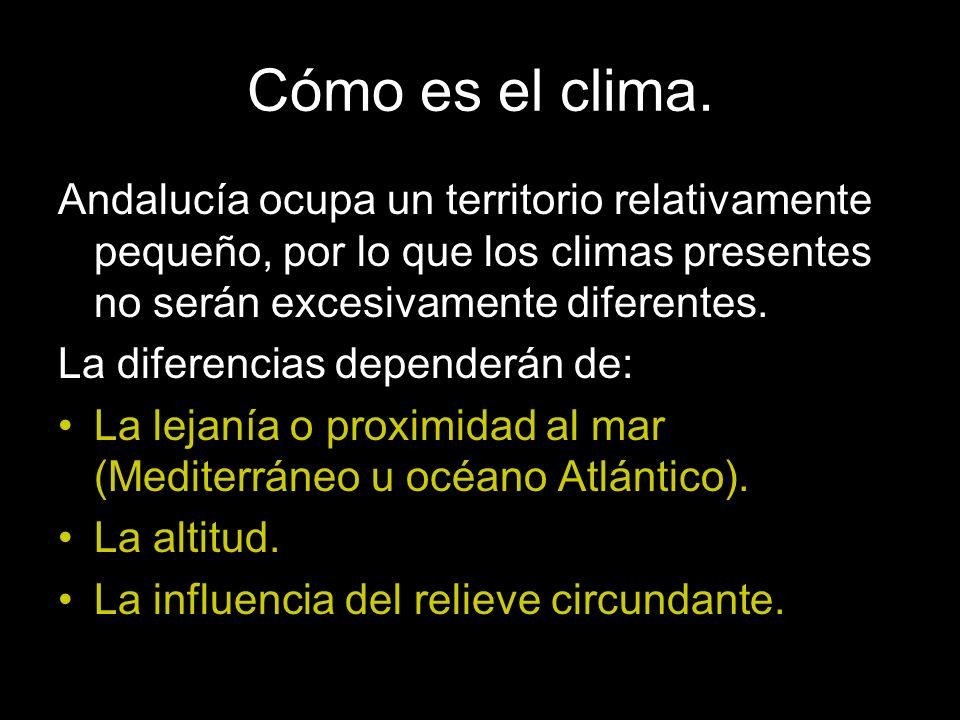 Cómo es el clima. Andalucía ocupa un territorio relativamente pequeño, por lo que los climas presentes no serán excesivamente diferentes.