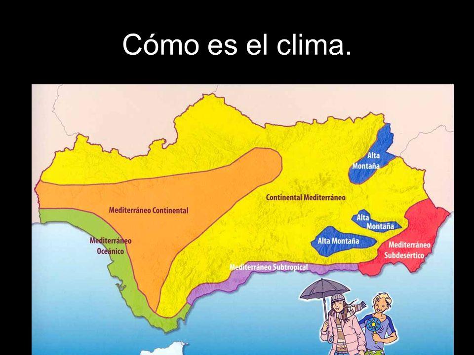 Cómo es el clima.