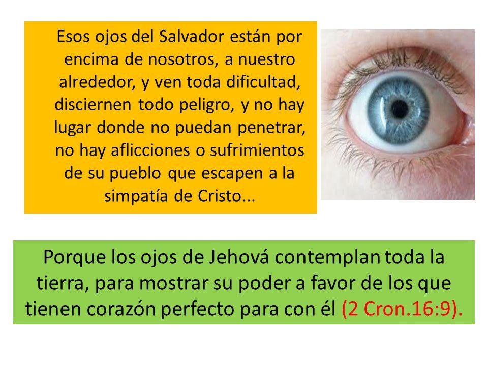 Esos ojos del Salvador están por encima de nosotros, a nuestro alrededor, y ven toda dificultad, disciernen todo peligro, y no hay lugar donde no puedan penetrar, no hay aflicciones o sufrimientos de su pueblo que escapen a la simpatía de Cristo...