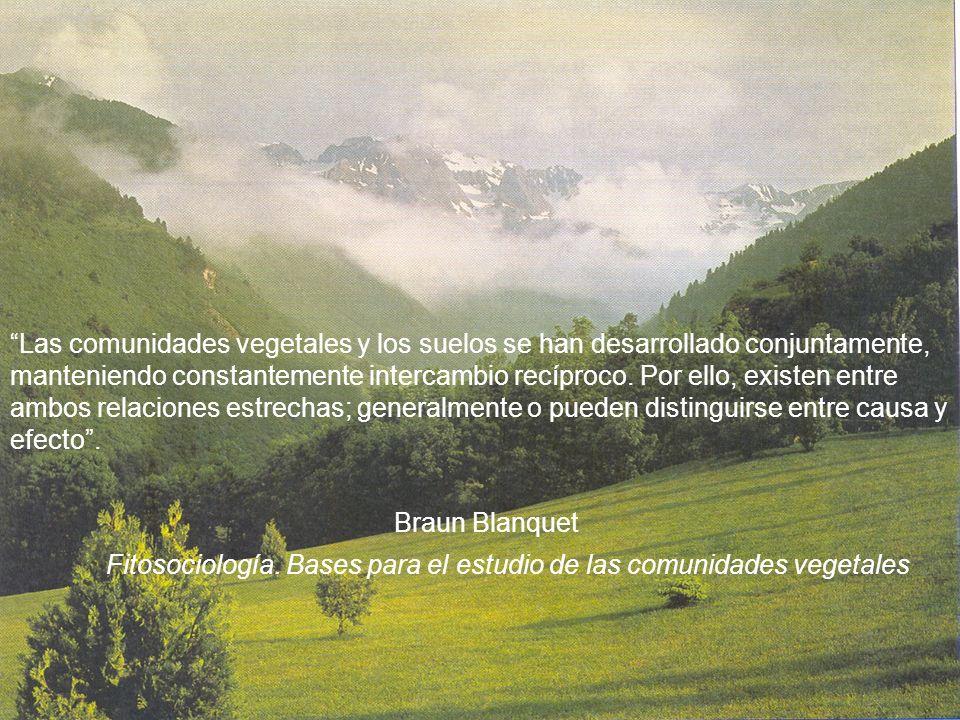 Fitosociología. Bases para el estudio de las comunidades vegetales