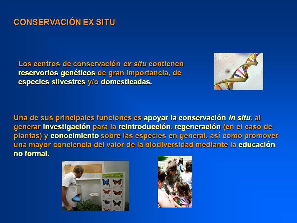CONSERVACIÓN EX SITU