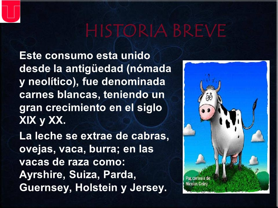 HISTORIA BREVE