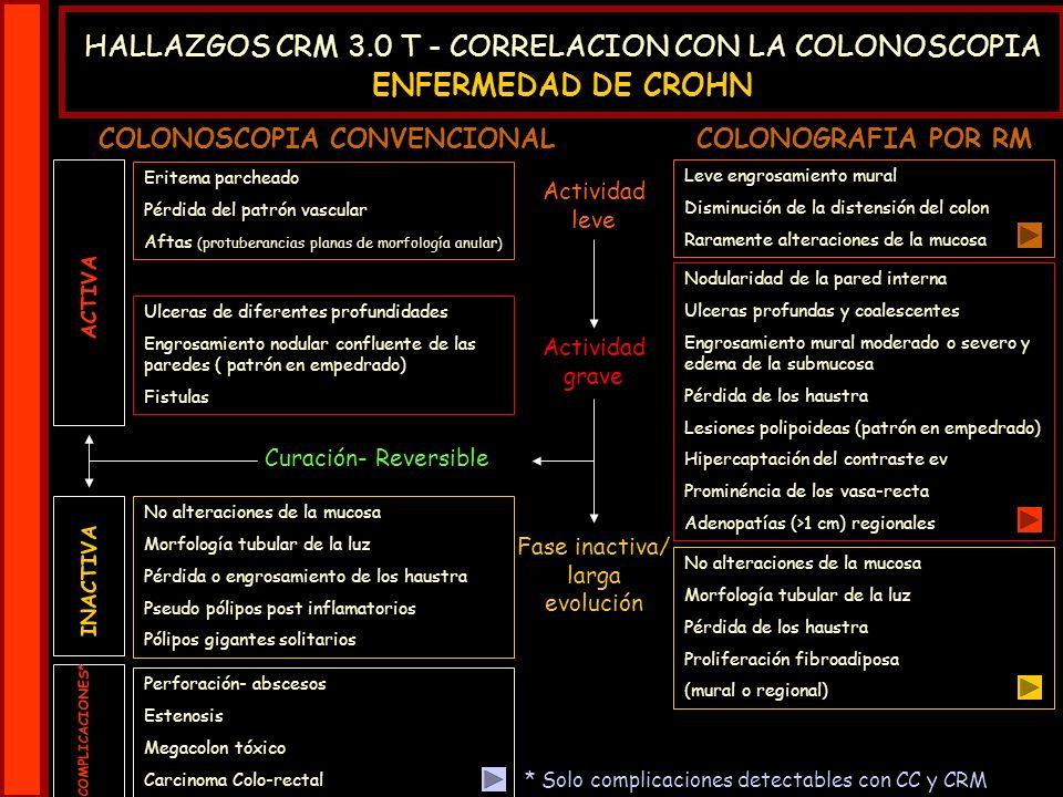 COLONOSCOPIA CONVENCIONAL