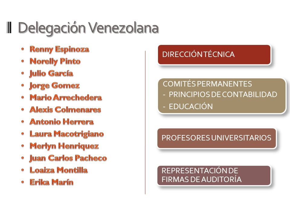 Delegación Venezolana