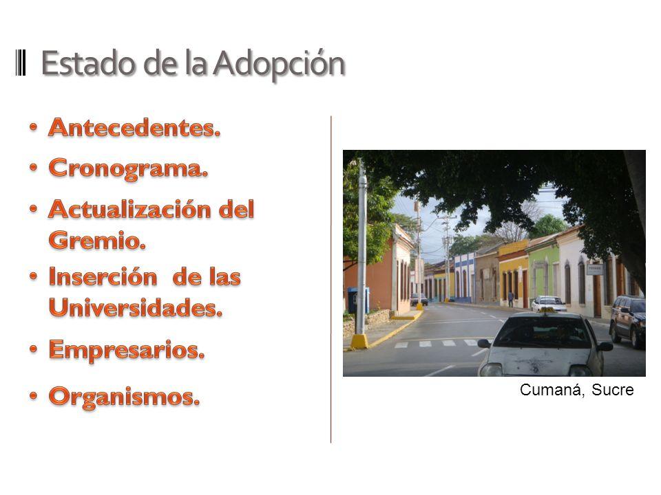 Estado de la Adopción Antecedentes. Cronograma.