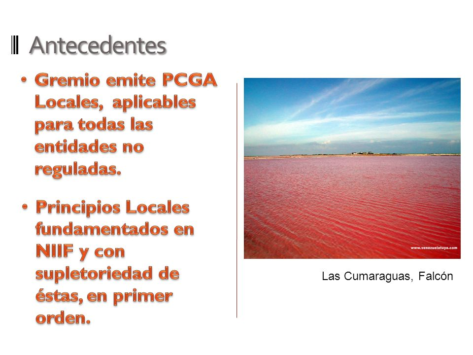 Antecedentes Gremio emite PCGA Locales, aplicables para todas las entidades no reguladas.