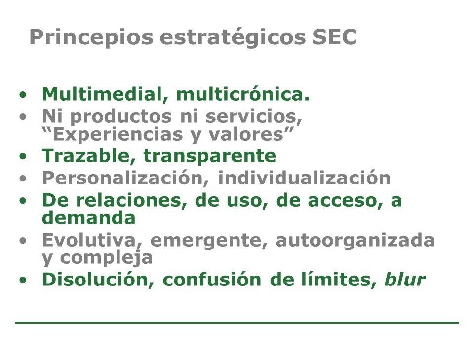 Princepios estratégicos SEC
