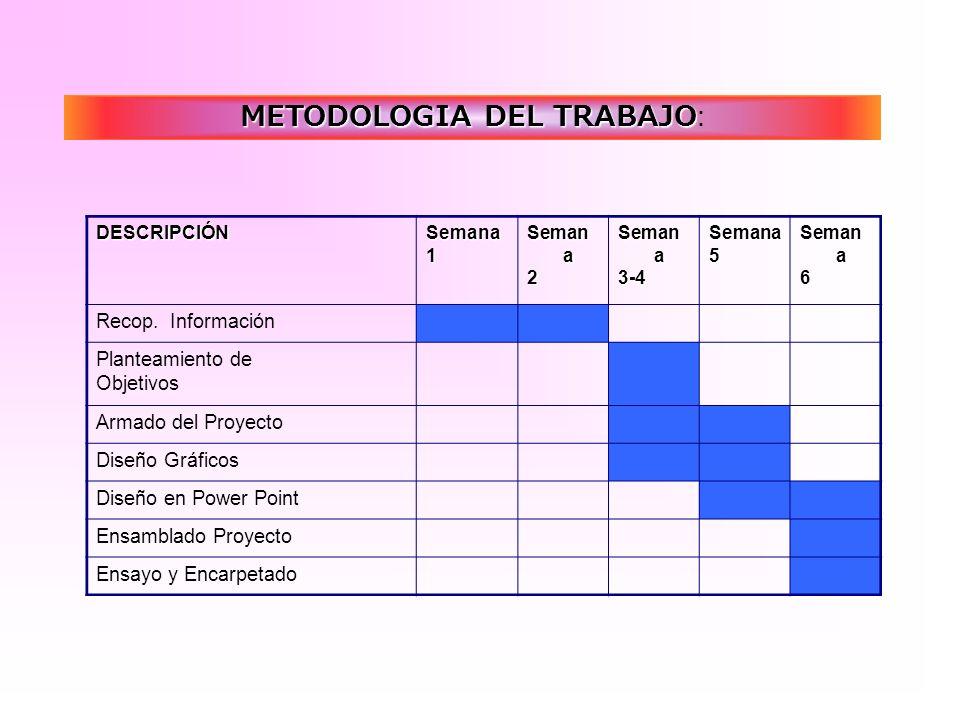 METODOLOGIA DEL TRABAJO: