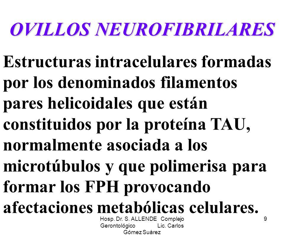 OVILLOS NEUROFIBRILARES