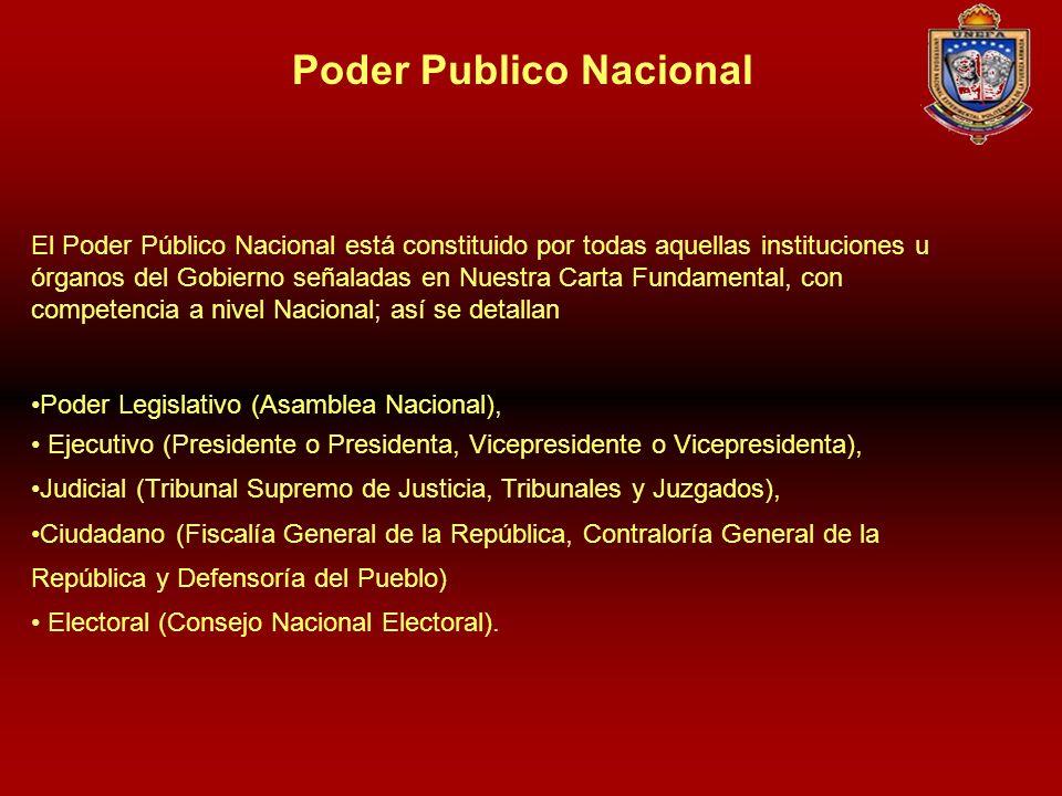 Poder Publico Nacional