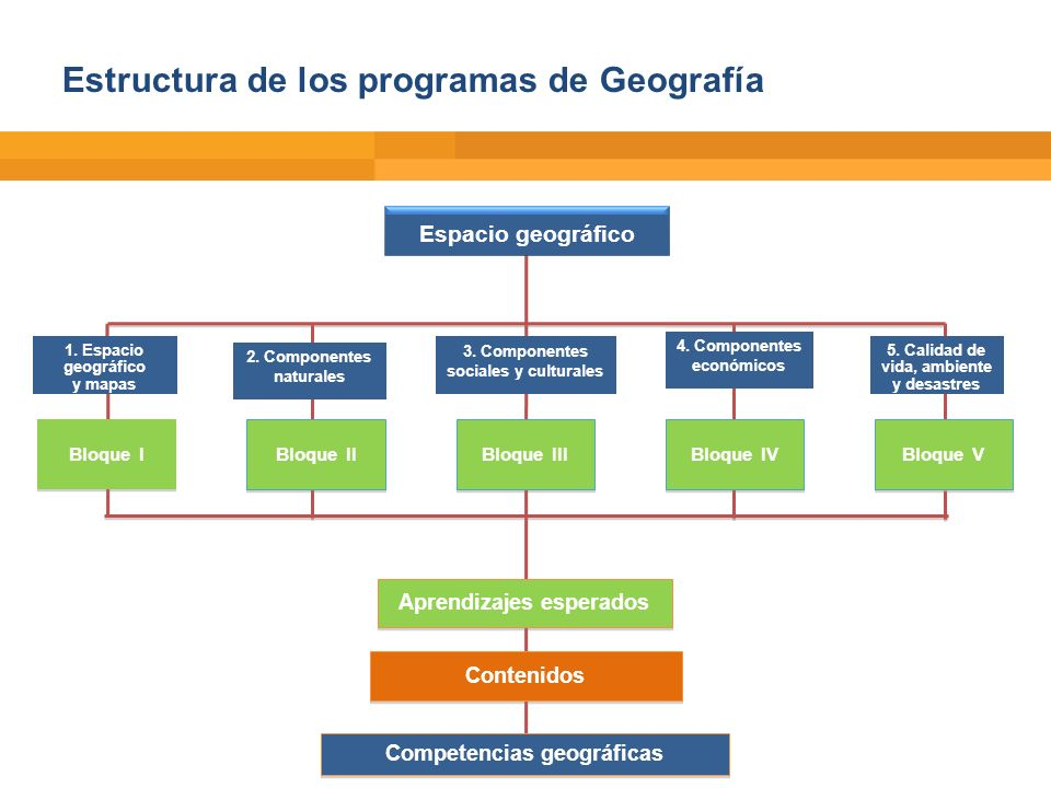 Estructura de los programas de Geografía