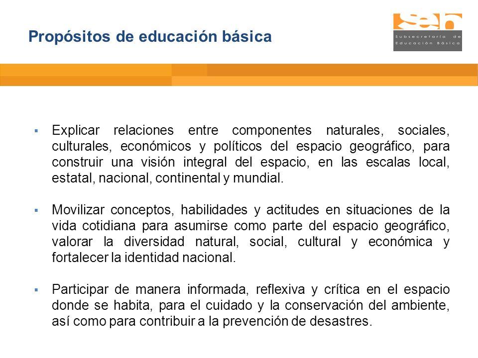 Propósitos de educación básica