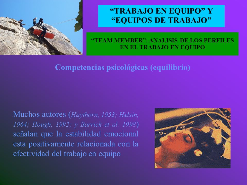 TEAM MEMBER : ANALISIS DE LOS PERFILES EN EL TRABAJO EN EQUIPO