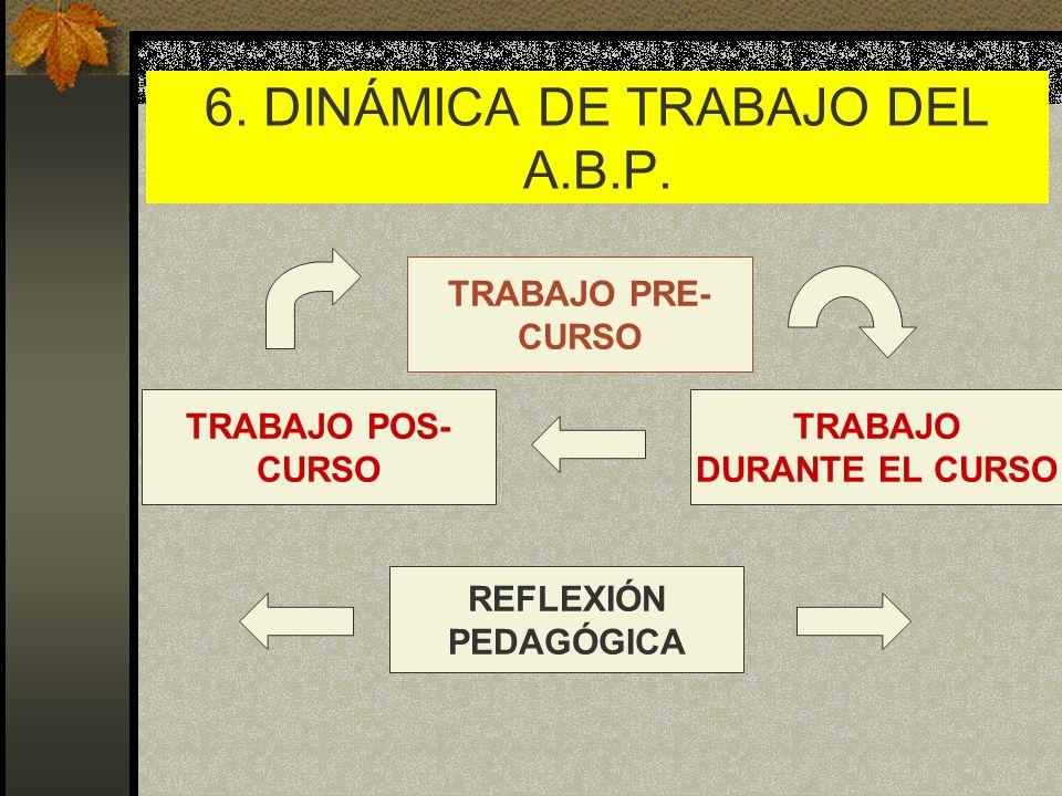 6. DINÁMICA DE TRABAJO DEL A.B.P.