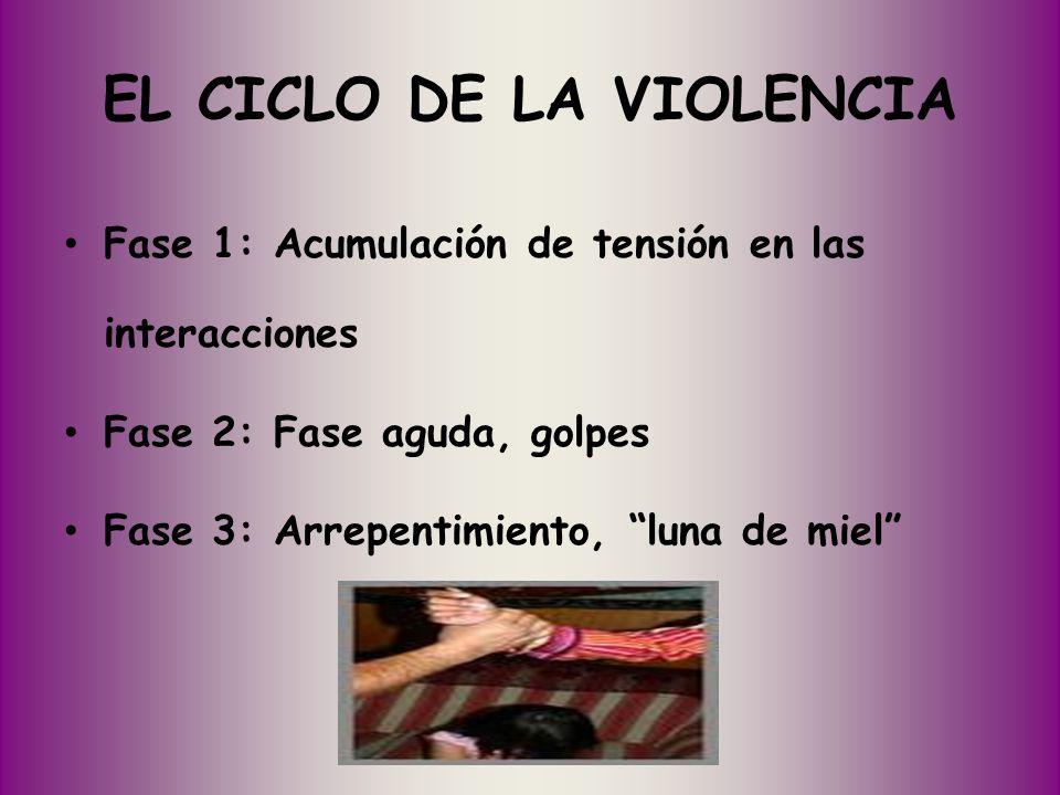 EL CICLO DE LA VIOLENCIA