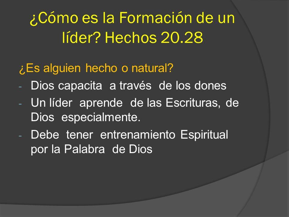 ¿Cómo es la Formación de un líder Hechos 20.28