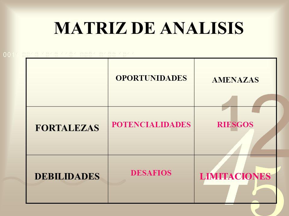 MATRIZ DE ANALISIS FORTALEZAS DEBILIDADES LIMITACIONES OPORTUNIDADES