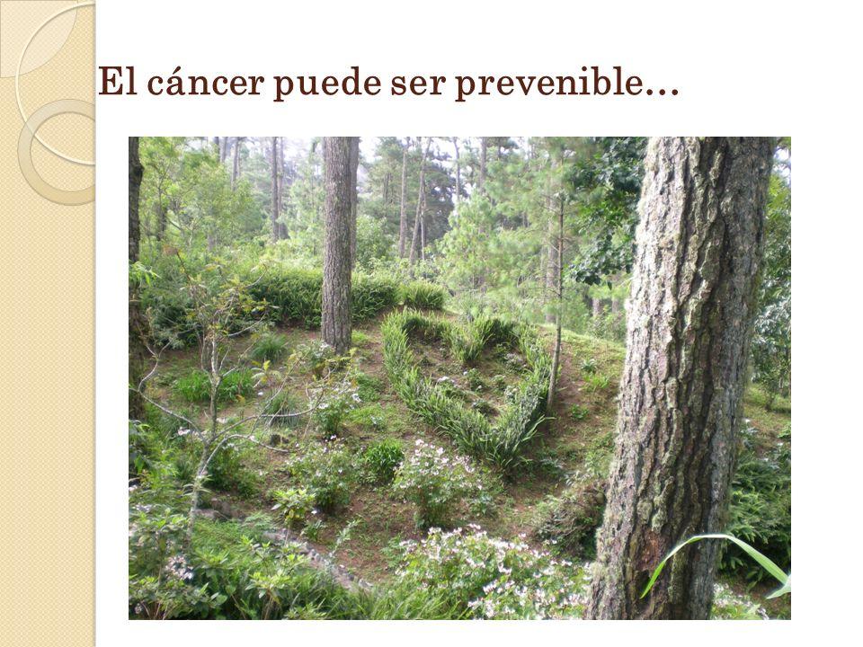 El cáncer puede ser prevenible…