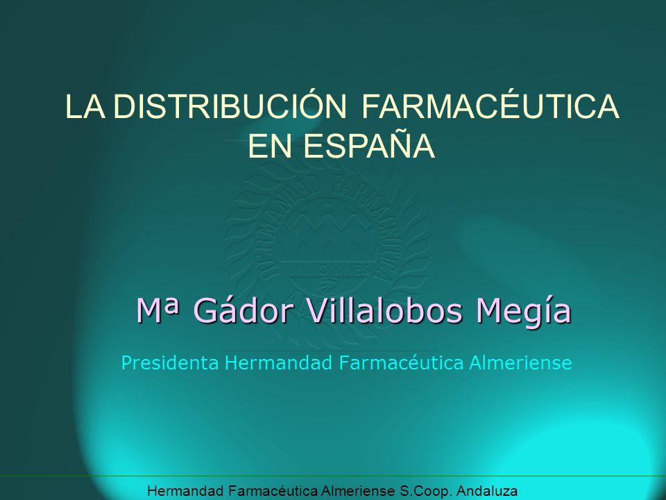 Mª Gádor Villalobos Megía Presidenta Hermandad Farmacéutica Almeriense