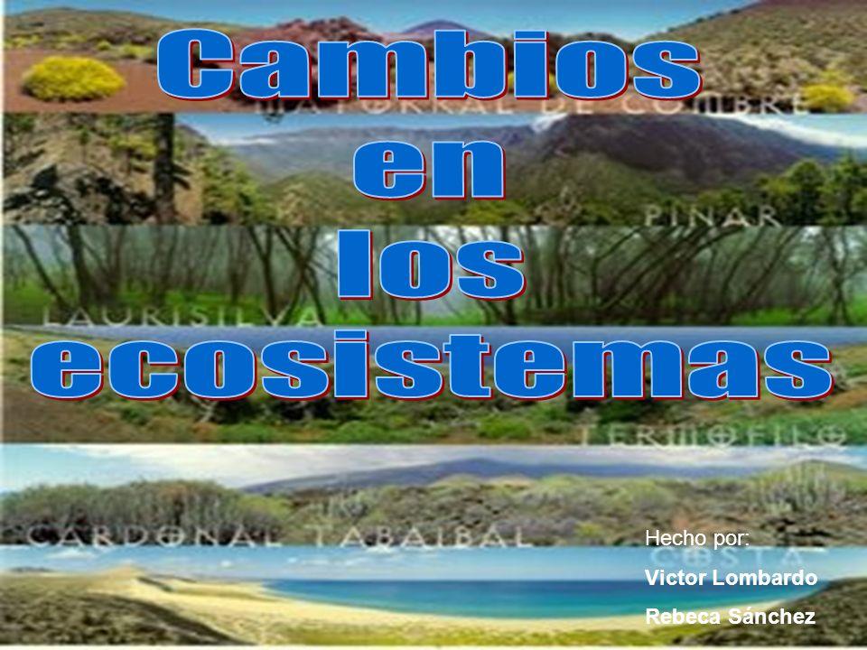 Cambios en los ecosistemas Hecho por: Victor Lombardo Rebeca Sánchez