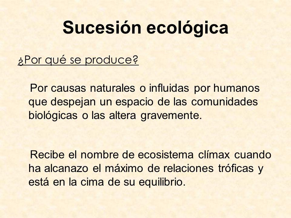 Sucesión ecológica ¿Por qué se produce