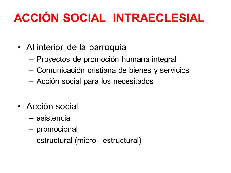 ACCIÓN SOCIAL INTRAECLESIAL