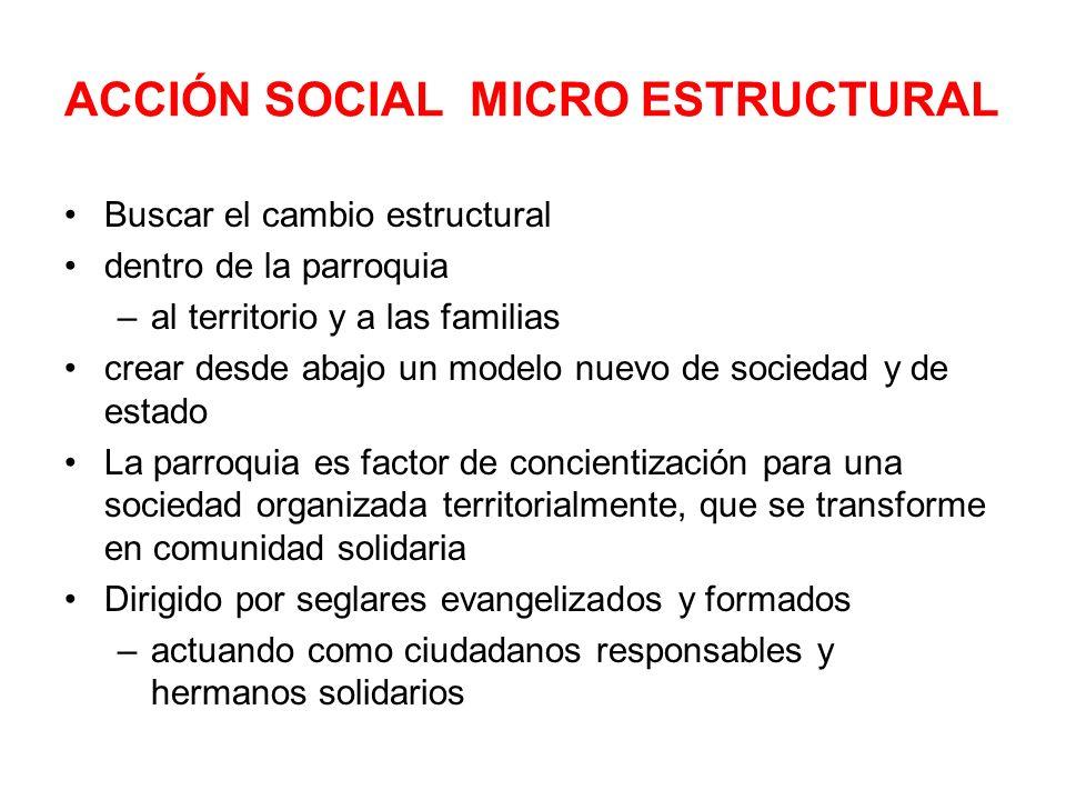 ACCIÓN SOCIAL MICRO ESTRUCTURAL