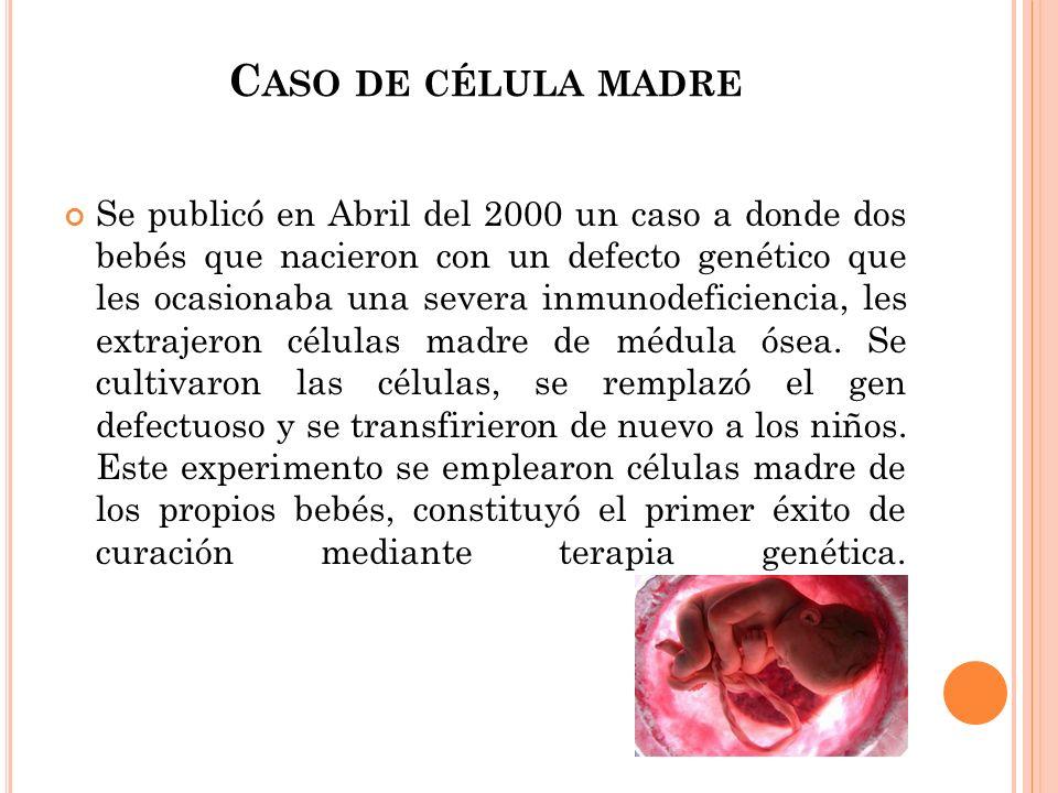 Caso de célula madre