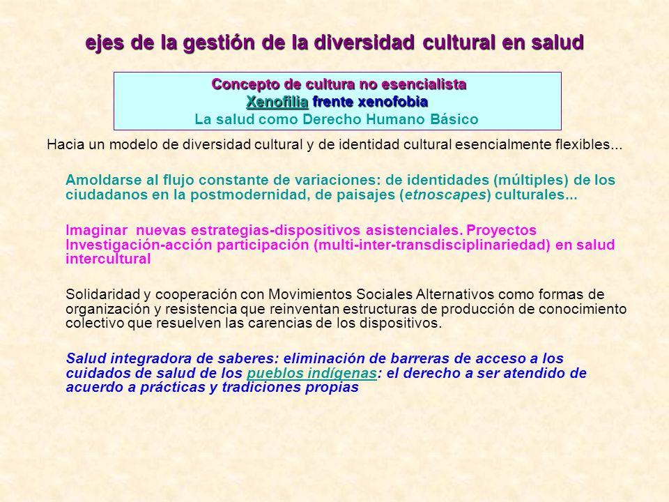 ejes de la gestión de la diversidad cultural en salud