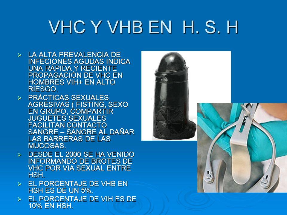 VHC Y VHB EN H. S. H LA ALTA PREVALENCIA DE INFECIONES AGUDAS INDICA UNA RÁPIDA Y RECIENTE PROPAGACIÓN DE VHC EN HOMBRES VIH+ EN ALTO RIESGO.
