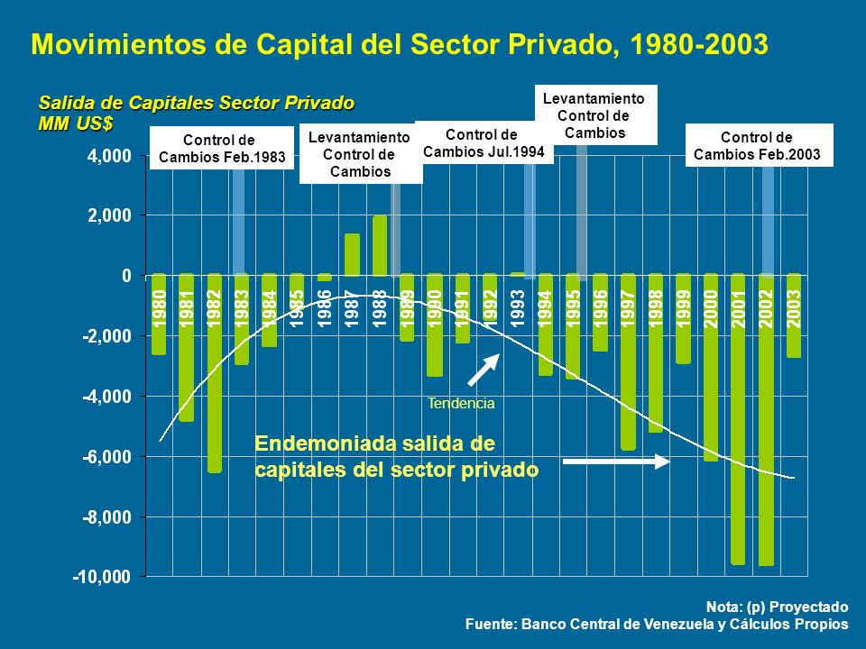 Movimientos de Capital del Sector Privado, 1980-2003