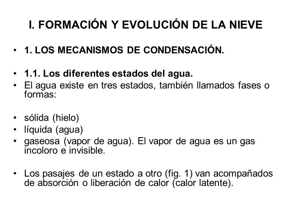 I. FORMACIÓN Y EVOLUCIÓN DE LA NIEVE