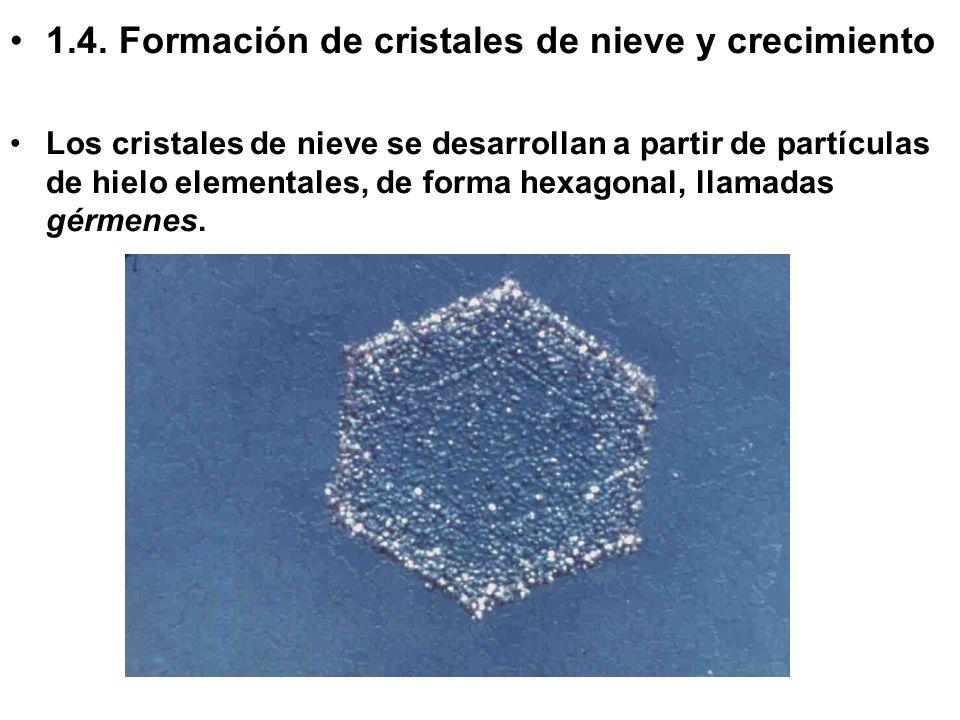 1.4. Formación de cristales de nieve y crecimiento