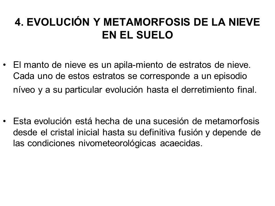 4. EVOLUCIÓN Y METAMORFOSIS DE LA NIEVE EN EL SUELO