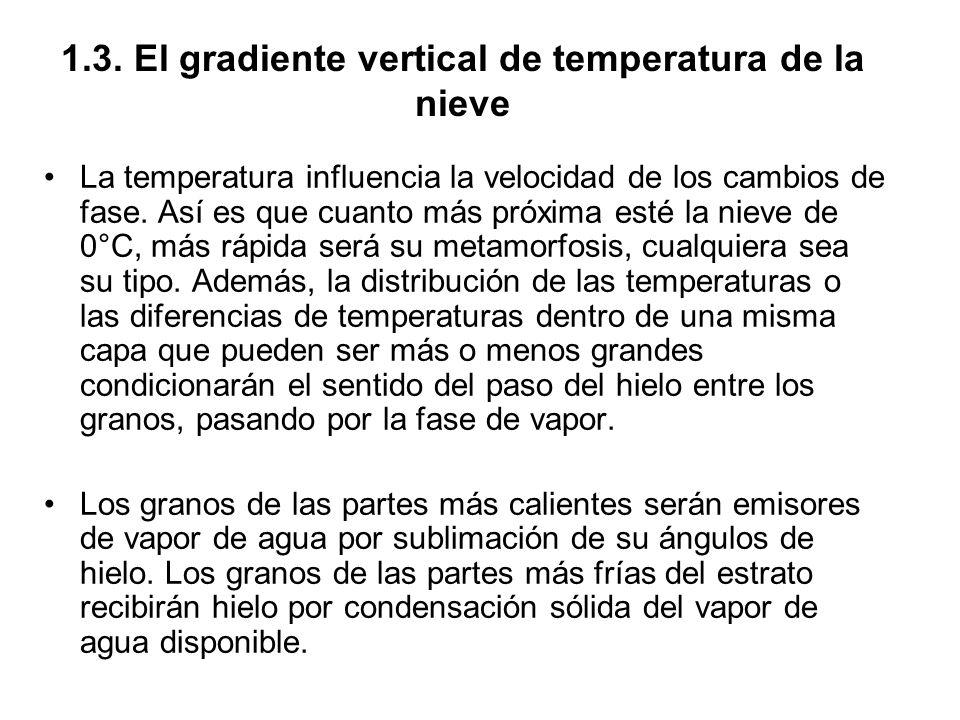 1.3. El gradiente vertical de temperatura de la nieve