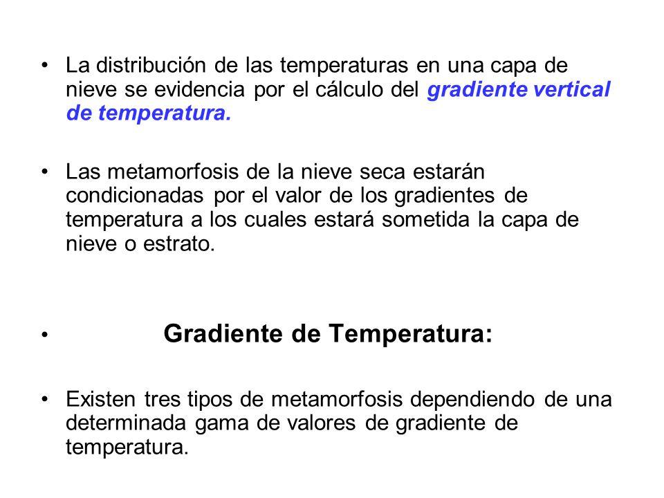 La distribución de las temperaturas en una capa de nieve se evidencia por el cálculo del gradiente vertical de temperatura.