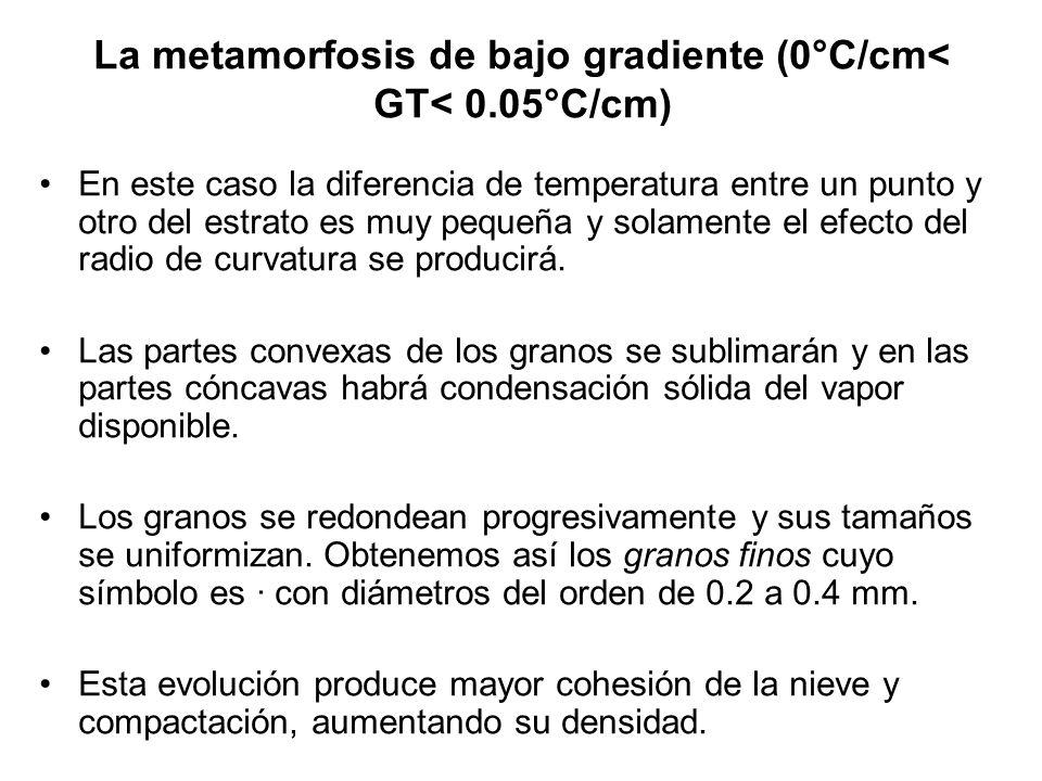 La metamorfosis de bajo gradiente (0°C/cm< GT< 0.05°C/cm)
